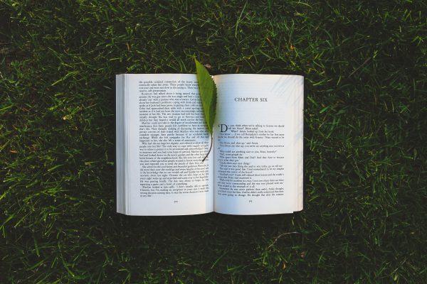 5 livres incontournables à lire en 2020 (si vous ne l'avez pas encore fait)